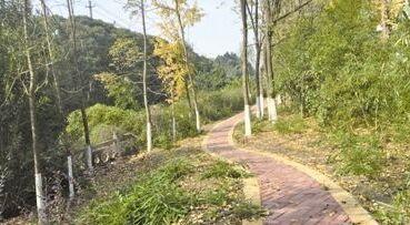 靖江真武河北路建设慢行步道